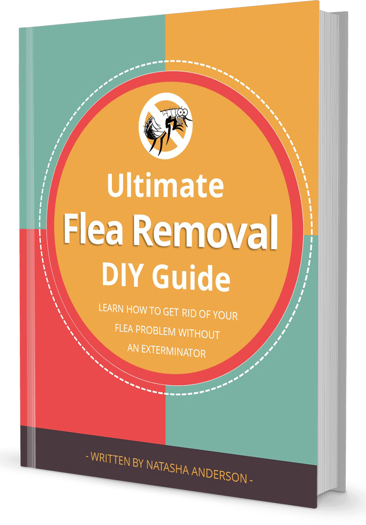 flea-removal-guide