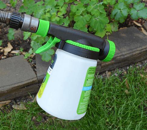 beneficial nematode flea control spray