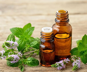 Picture of a two essential oil bottles used to repel fleas