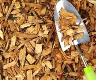Photo of cedar wood chips that can repel fleas from outside areas